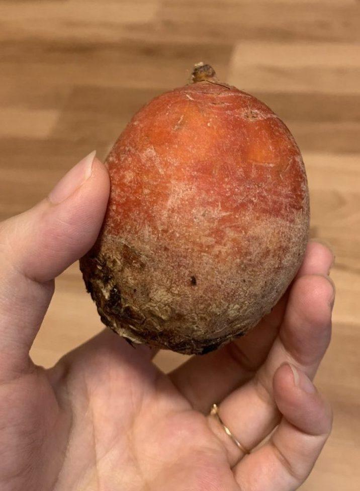 坂ノ途中野菜セットの口コミ評判レビューブログ(オレンジビーツ)